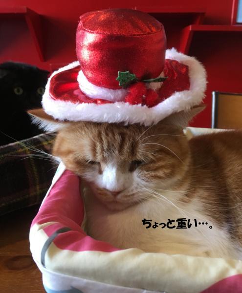 ふうたと帽子