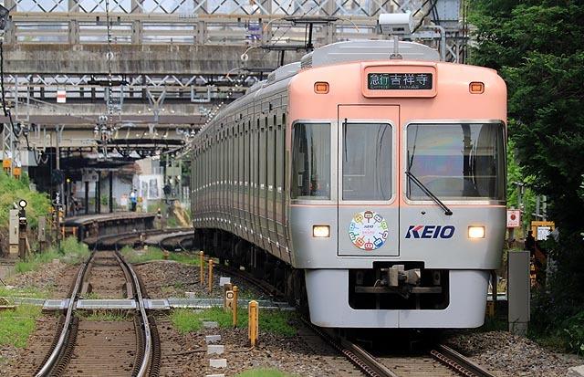 a-938A9655.jpg