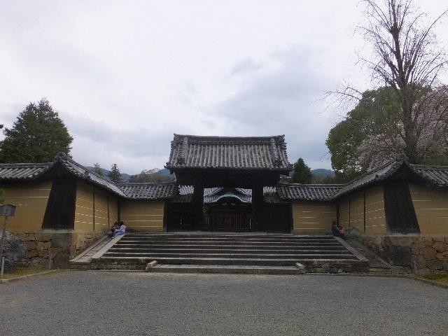201704kyoto0411.jpg