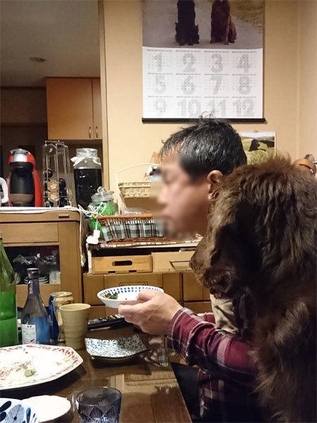 20170409夕食