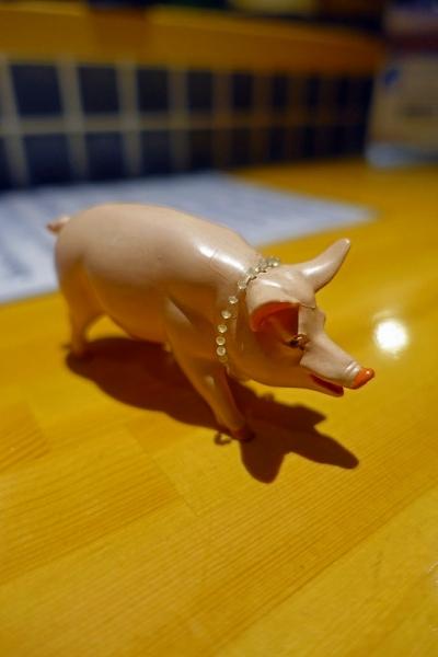 松と豚004