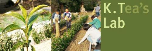 Fujisawa_de_Ochazukuri3_image1_resize.jpg