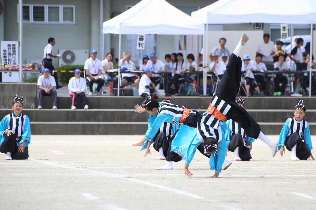 seika16sakura 29
