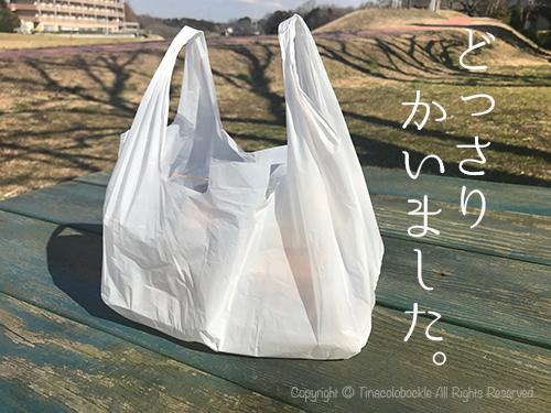 201702Takano_Noda-6.jpg
