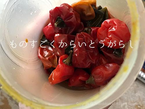 201703Nepal_Food_Party-10.jpg