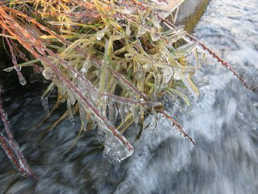 IMG_7155凍る