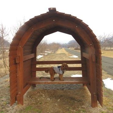 IMG_7365緑地公園