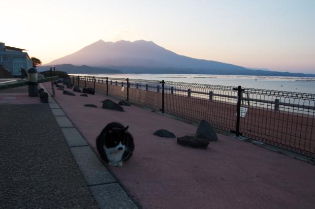kagoshima16.jpg