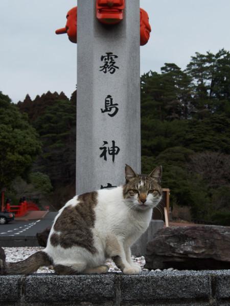 kagoshima23.jpg