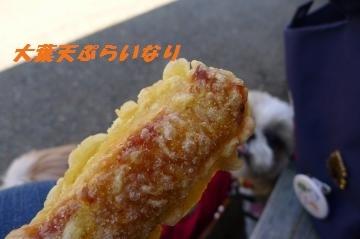 いなり-1