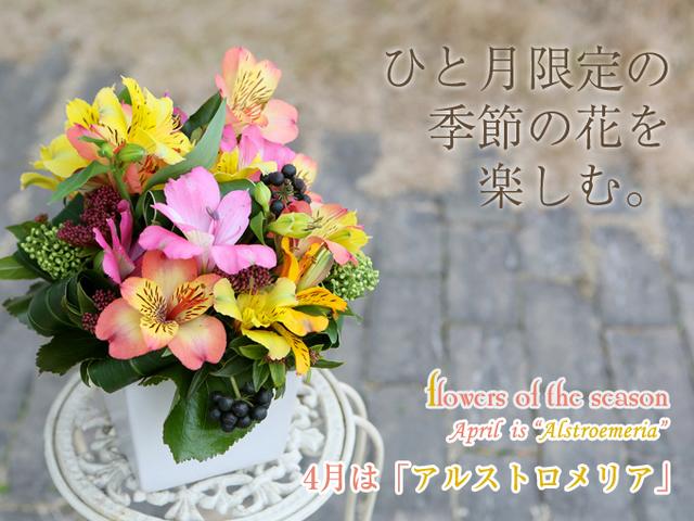 季節の花 誕生日 お祝 アレンジ 配達 宅配