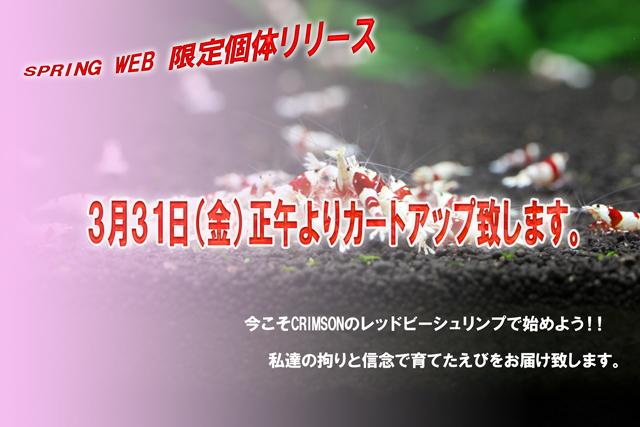 web640.jpg
