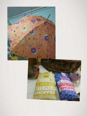 母の日エコバッグ傘