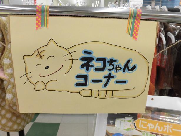 猫コーナー