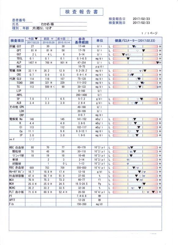 2017わかめ健康診断3