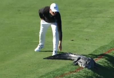 【スゴイ!】ゴルフ場にワニが普通にいるってどういうこと?