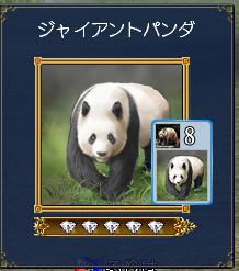 20170414-03パンダ~^^