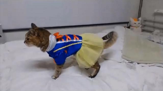 バースデーパーティ(白雪姫)02