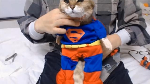 バースデーパーティ(スーパーマン)12