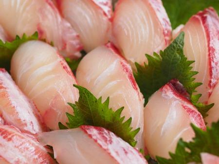 コロダイにぎり寿司34