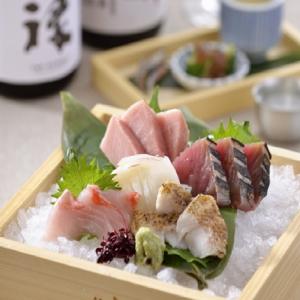 刺盛&日本酒イメージ444