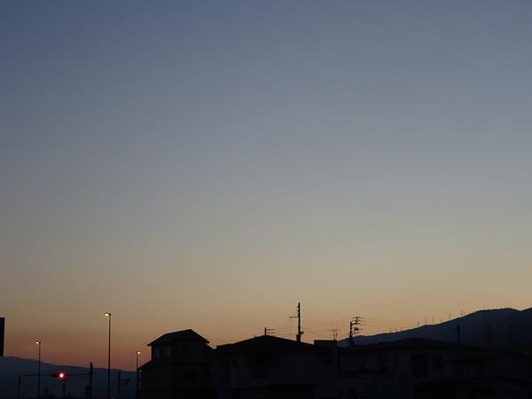 DSC06111.jpg