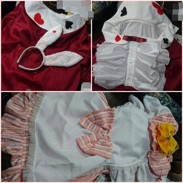 2017-3衣装