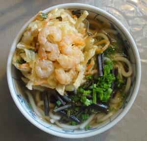 ワラビ山菜うどんblog01