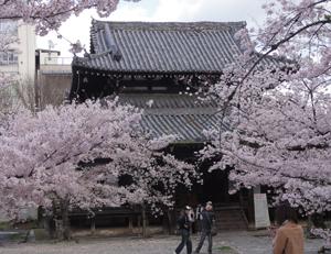 立本寺blog01