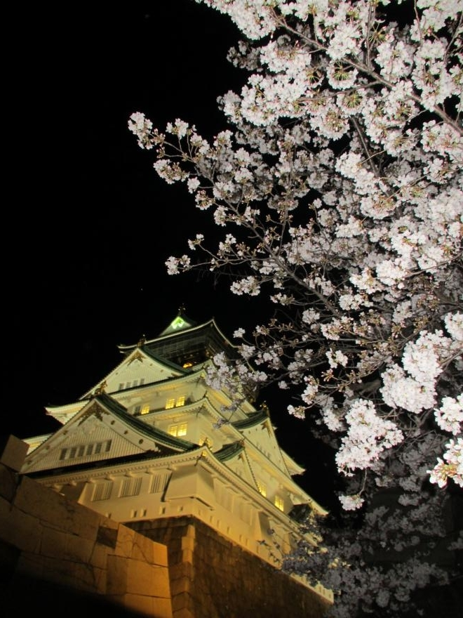 大阪城夜景4