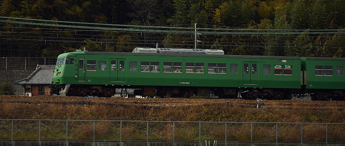 DSC_4695z.jpg