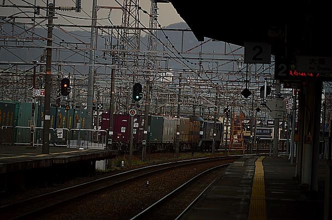 DSC_6394s.jpg