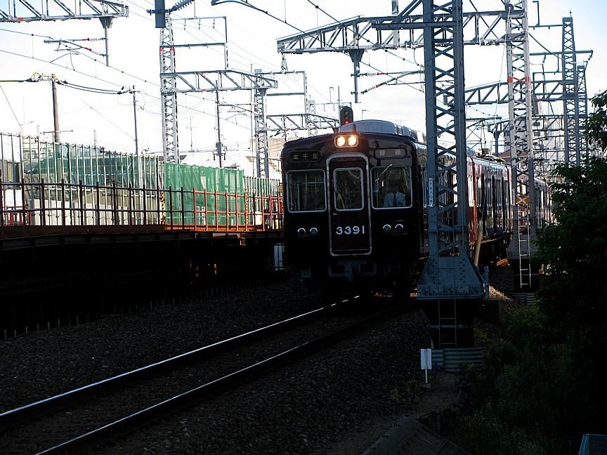 IMG_9118s.jpg
