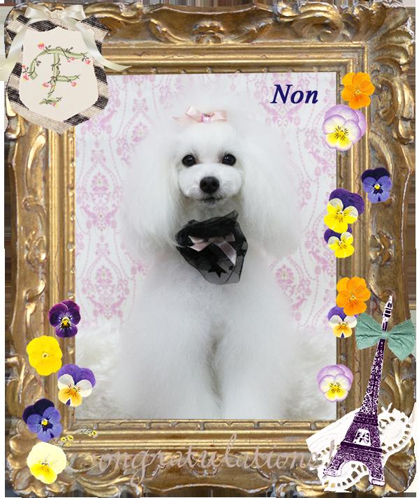 ノンちゃん3-1