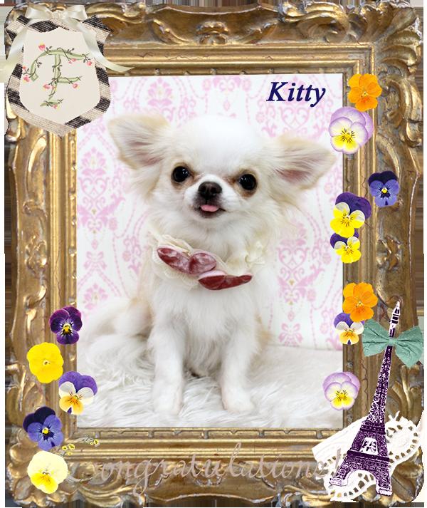 KITTYちゃん 3月-1