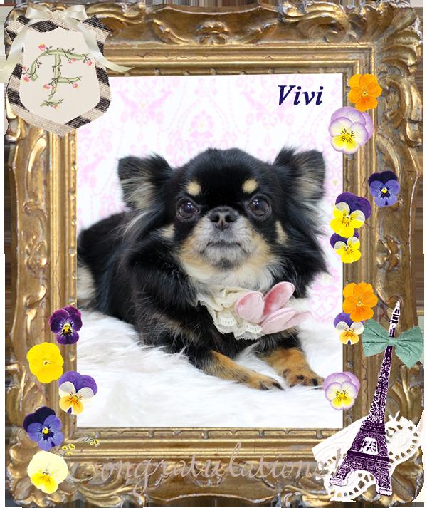 VIVIちゃん-3月-1