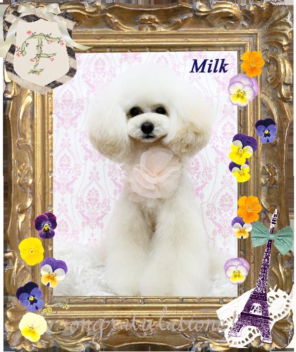 ミルクくん 3月-1