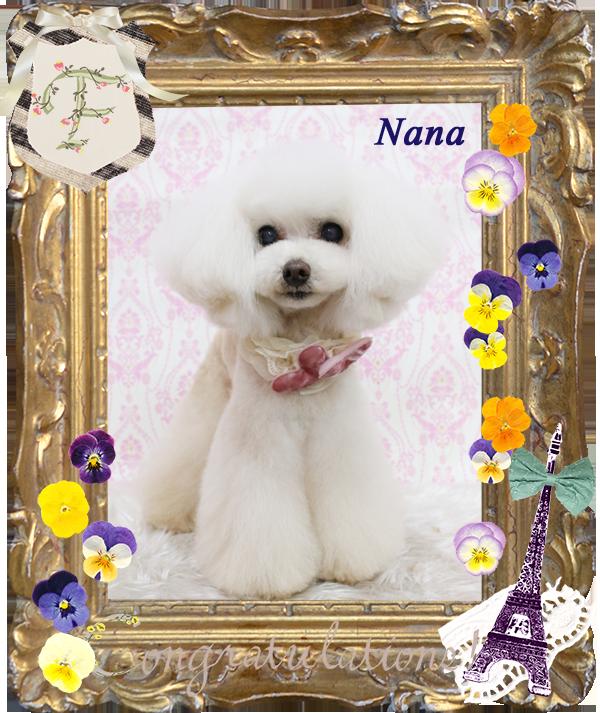 ナナちゃん3-1