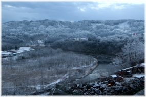 170210E 004雪の朝32