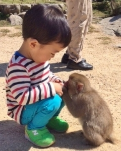お猿の国 (11)
