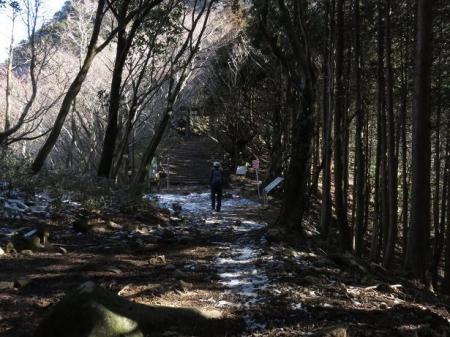 多良岳に登る 099