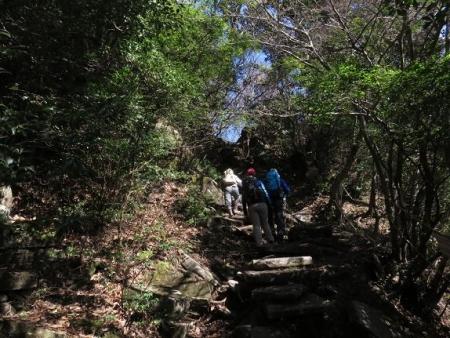 多良岳に登る 122