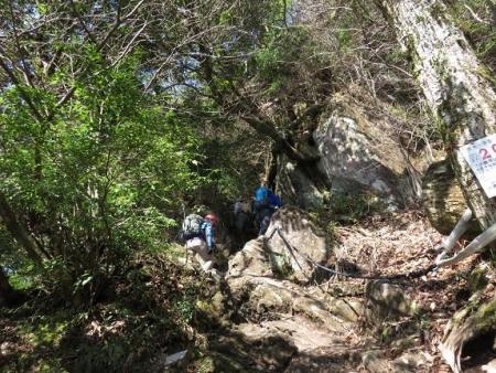 多良岳に登る 120