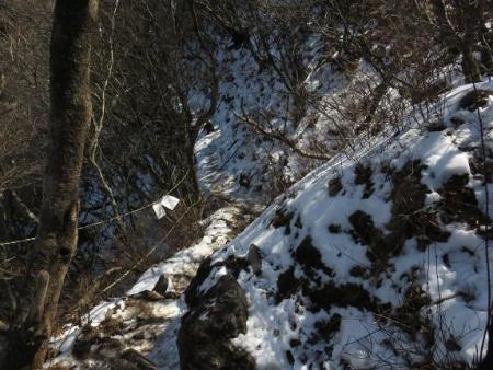 多良岳に登る 143
