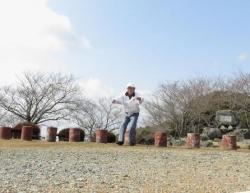 清水の桜 031