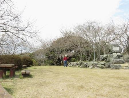 26日女山桜開花 072