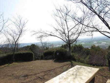 28日大川ヒヨと清水桜 168