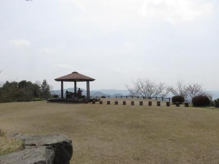 桜30日清水山 099