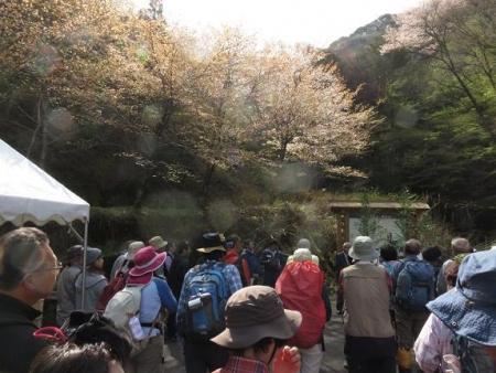 カラ迫山開き 077