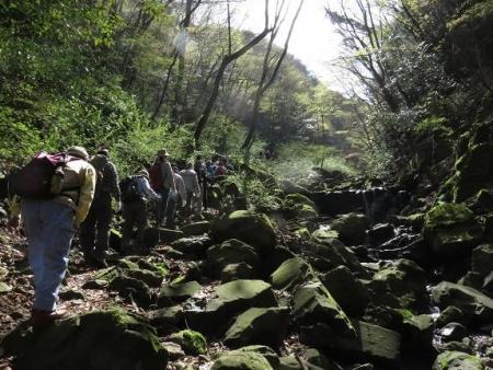 カラ迫山開き 093